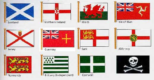 Use Of Flags